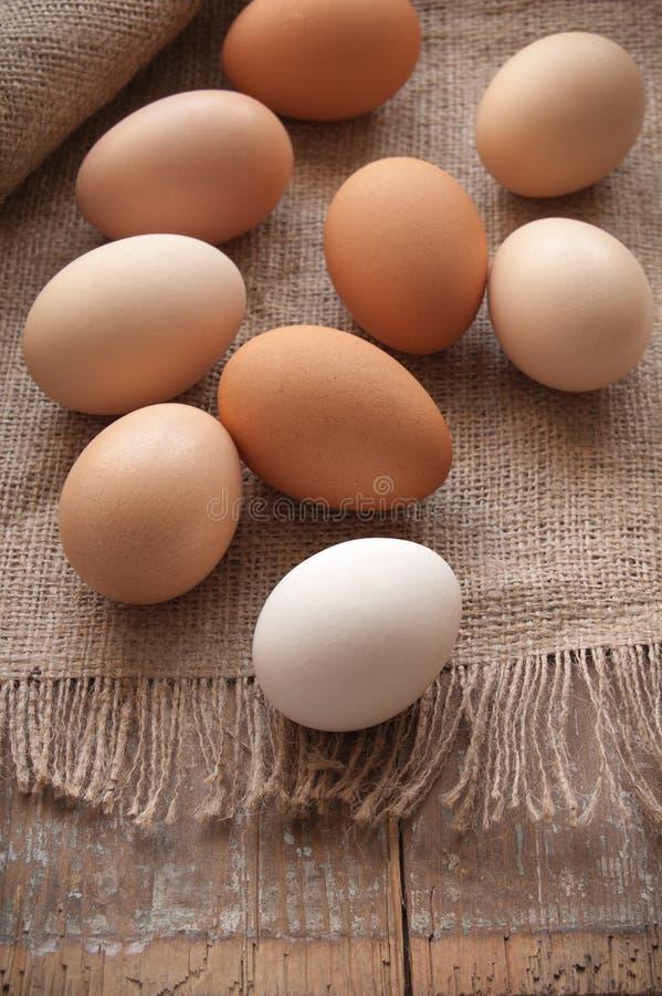Organic eggs. On the cloth stock photo