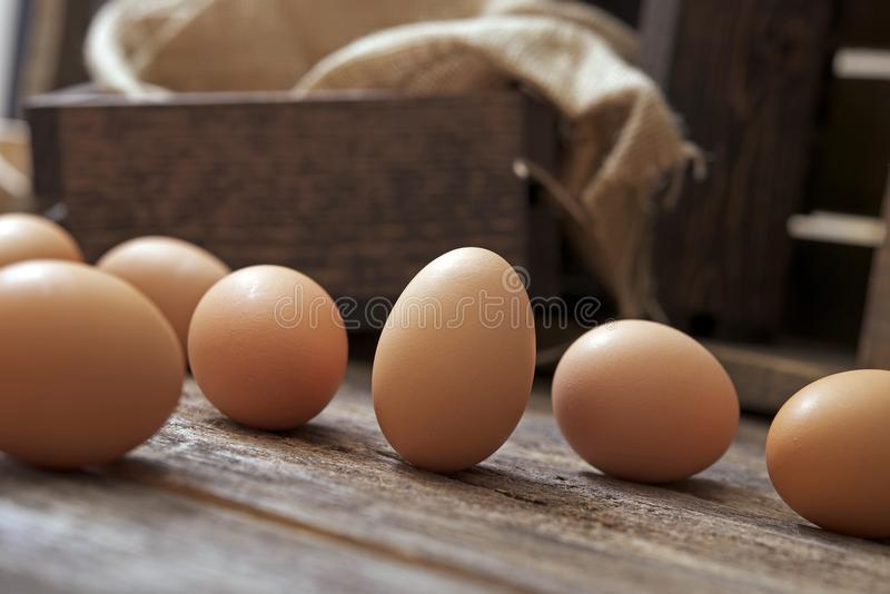 Organic Eggs on Wood royalty free stock images