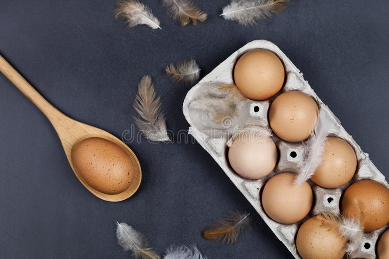 Organic eggs, wooden spoon and feathers stock image