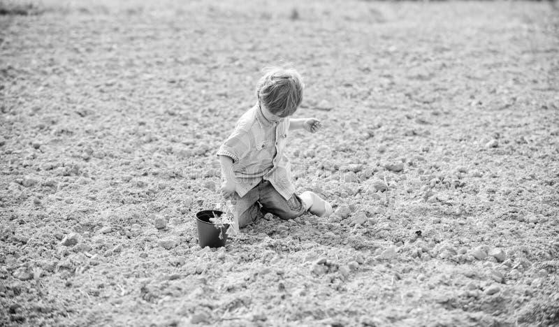 Organic farm. planet protection. ecology life. eco farm. human and nature. earth day. new life. summer farm. happy child. Gardener. plant nursery. Spring season royalty free stock photos