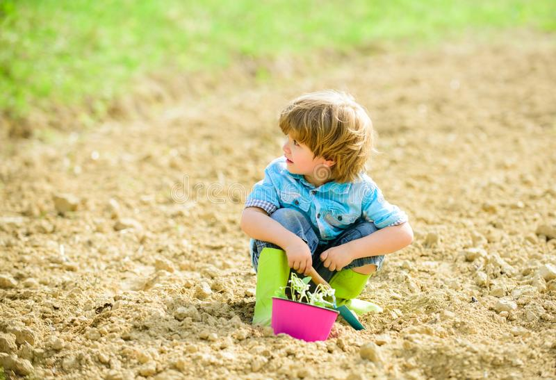Organic farm. planet protection. small kid planting flower. ecology life. eco farm. human nature. earth day. summer farm. Happy child gardener. plant nursery stock images