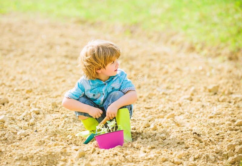 Organic farm. planet protection. small kid planting flower. ecology life. eco farm. human nature. earth day. summer farm. Happy child gardener. plant nursery stock photography