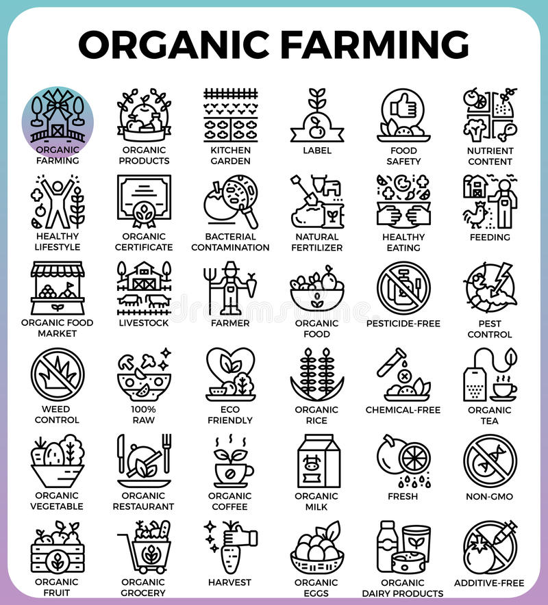 Organic farming concept detailed line icons. Set in modern line icon style for ui, ux, web, app design royalty free illustration