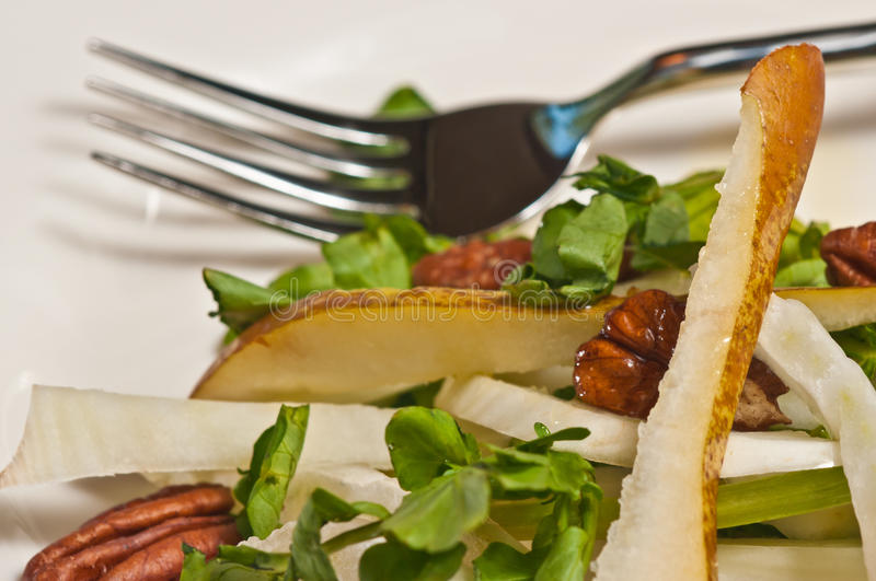 Organic fennel, pear and watercress salad with pecan papeo diets. Organic, sliced fennel, pear and watercress salad with pecans with an artisan fork on a round stock photos