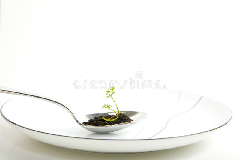 Organic food royalty free stock photography