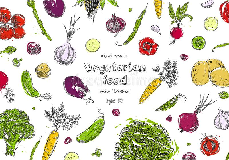 Organic food design template. Fresh vegetables. Detailed vegetarian food drawing. Farm market product. Great for label stock illustration
