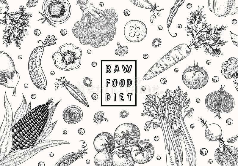 Organic food design template. Fresh vegetables. Hand drawn illustration frame with vegetables. Eco organic food. Great vector illustration