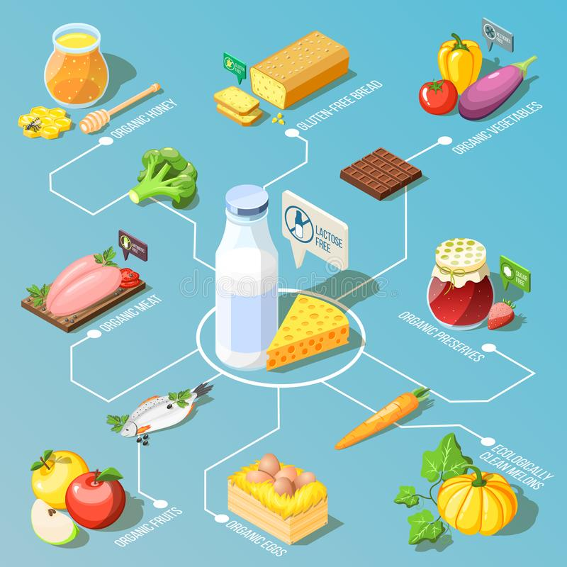 Organic Food Isometric Flowchart. Organic food including, ecologically clean fruits and vegetables, dairy products isometric flowchart on turquoise background vector illustration