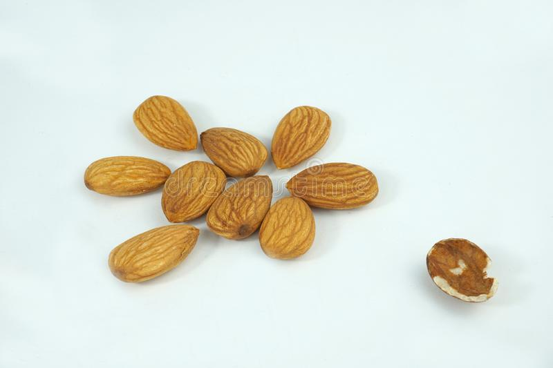 Organic fresh almonds and a bad almond out of the group  on white background. The good the bad group differentiated stock photo
