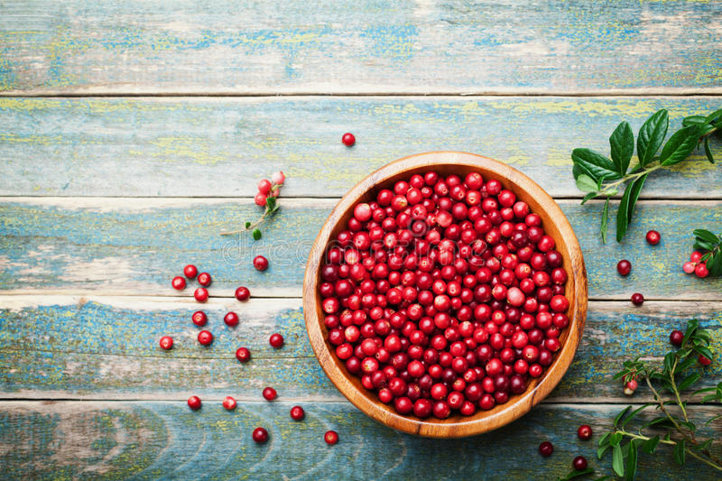 Organic fresh cowberry lingonberry, partridgeberry, foxberry in wooden bowl on rustic vintage table top view. Copy space for text stock images