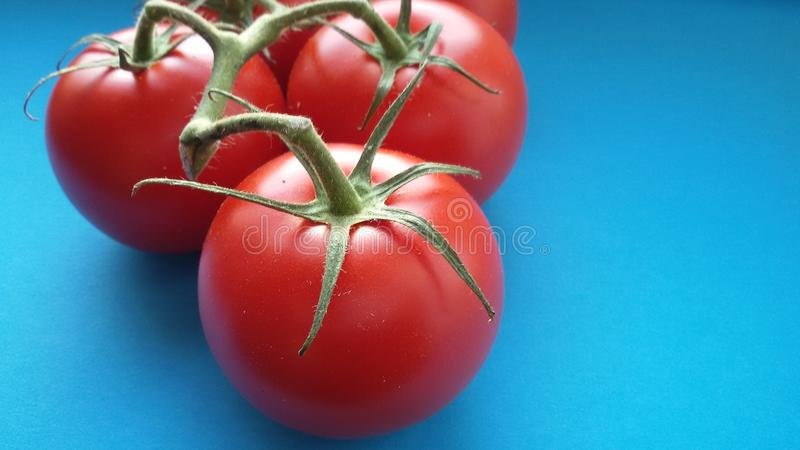 Organic fresh tomatoes. Delicious and healthy. Fresh tomatoes over blue background. Organic vegetables. Bio food royalty free stock photo