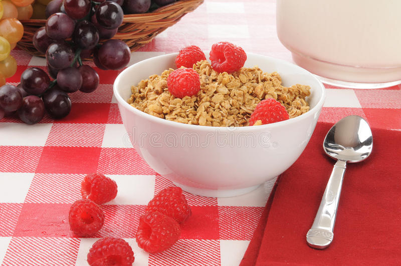 Download Organic granola stock photo. Image of pitcher, wholesome - 27154098