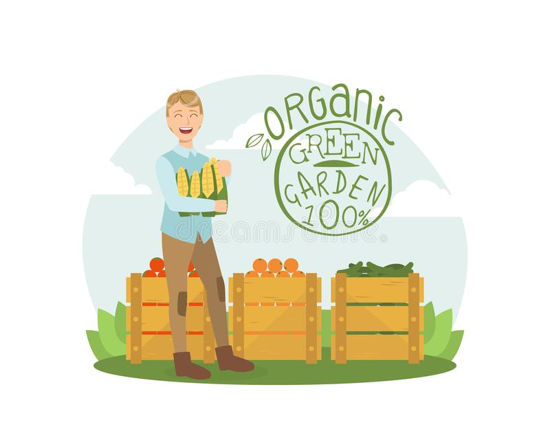 Organic Green Garden, Smiling Man with Fresh Bio Vegetables and Fruits in Wooden Crates Vector Illustration stock illustration