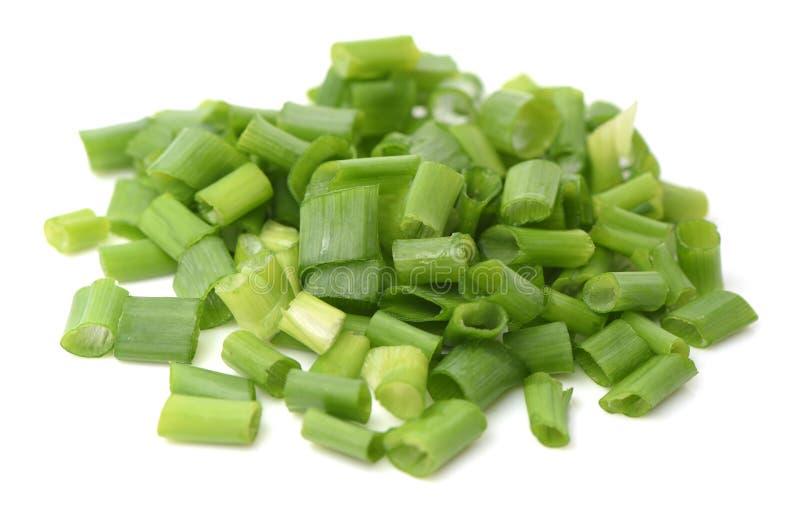 Organic green onion scallion stock image