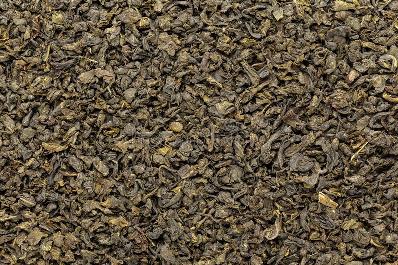 Organic Green Tea (Camellia sinensis) dried whole leaves. Macro close up background texture. Top view royalty free stock photography