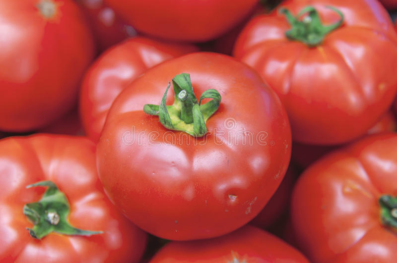 Organic healthy fresh big red ripe tomatoes on the market on sun royalty free stock images
