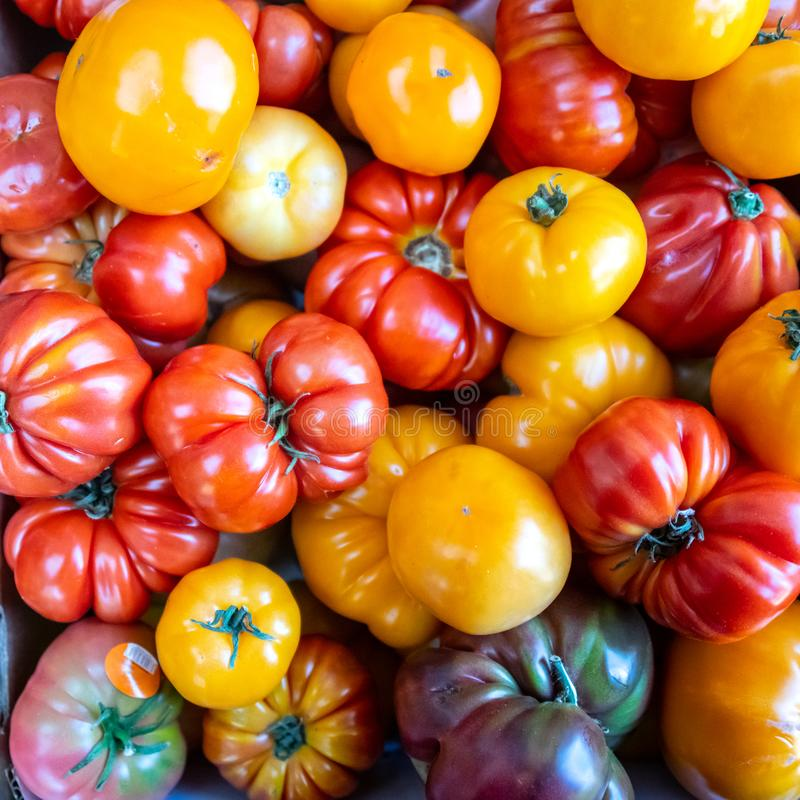 Organic Heirloom tomatoes from above royalty free stock images