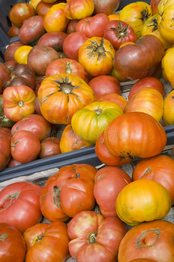 Organic Heirloom Tomatoes from the Farmers Market stock images