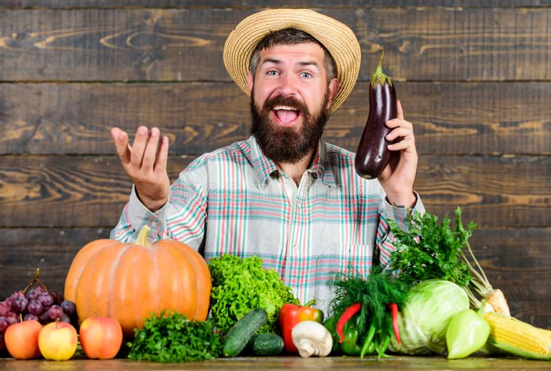 Organic horticulture concept. Farmer with organic vegetables. Gardening and farming systems prescribe specific. Techniques. Grow organic crops. Homegrown royalty free stock image