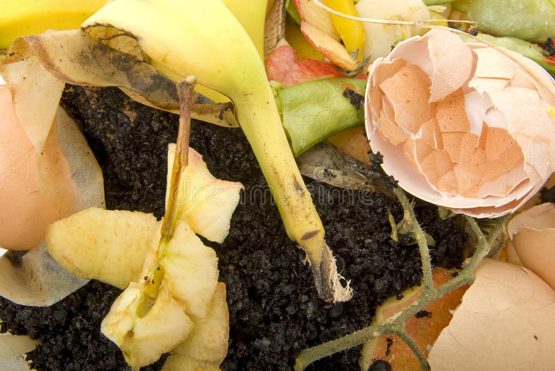 Organic household waste ready to compost