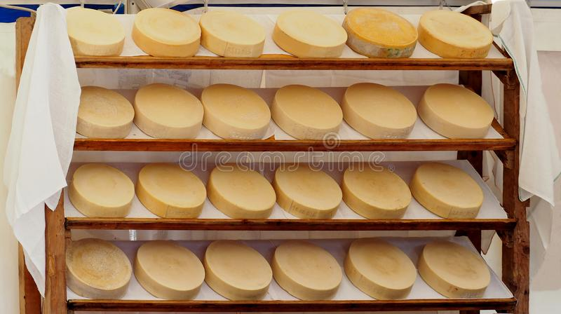 Organic italian cheese wheels on a shelf of a rural market. Every cheese wheels has marked its manufacturing date royalty free stock photography