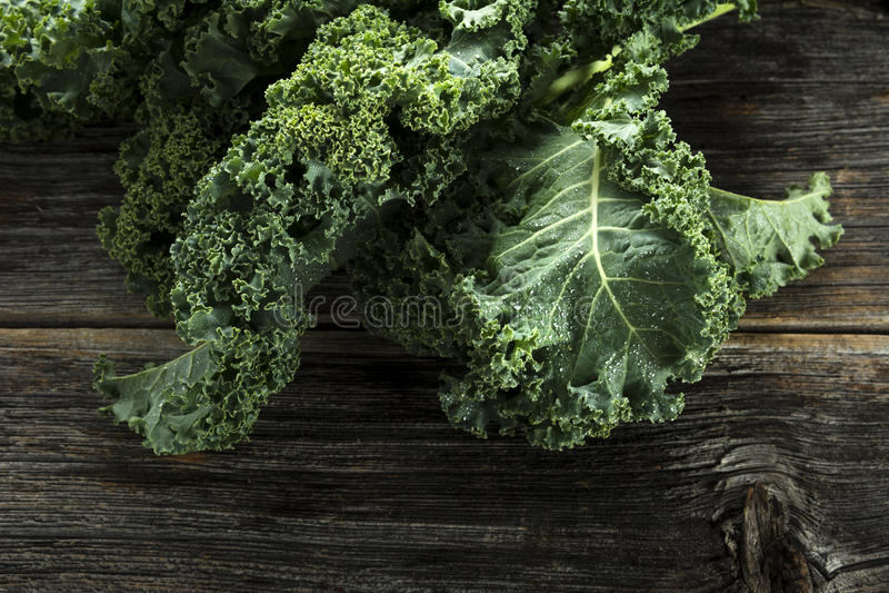 Organic Kale royalty free stock photo
