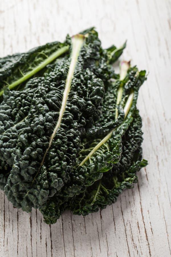 Organic Lacinato Kale vertical shot. Vertical shot of organic lacinato kale on white table stock image