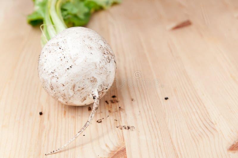 Organic May Turnip Root Royalty Free Stock Photos