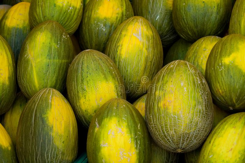 Melons in market. Organic melons in a market place. Natural food royalty free stock photo