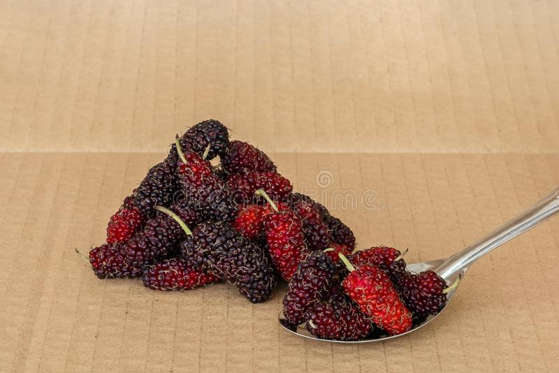 Organic Mulberry fruits in Stainless steel spoon. And many pile of Mulberry friut on brown cardboard background royalty free stock photography