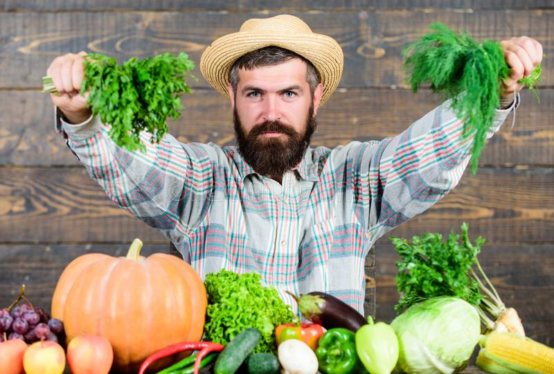 Organic and natural food. happy halloween. harvest festival. seasonal vitamin food. Useful fruit and vegetable. natural. Eating. bearded mature farmer. men chef royalty free stock images