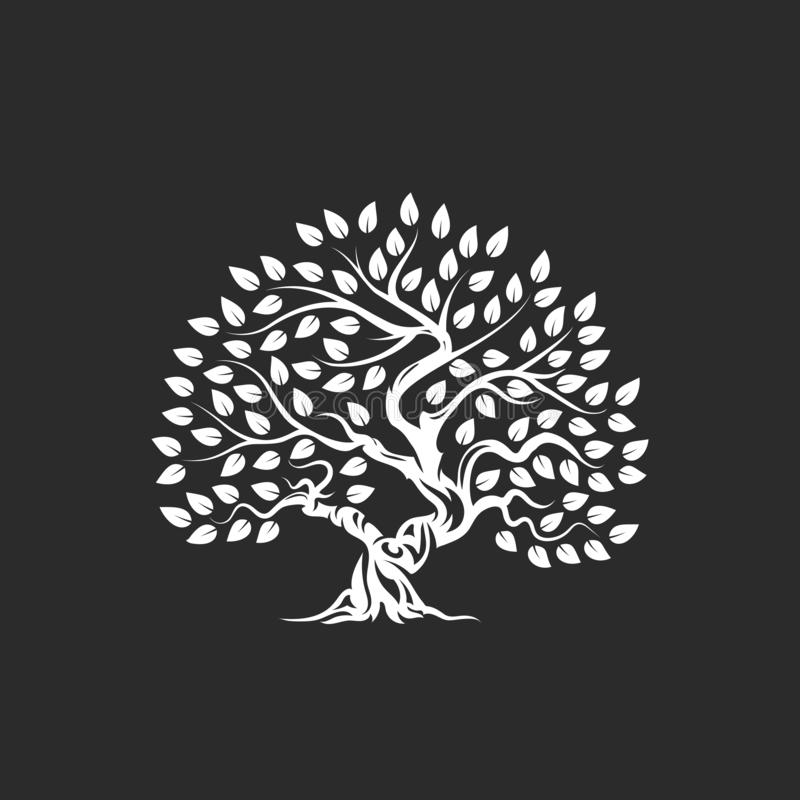Organic natural and healthy olive tree silhouette logo isolated on dark background. royalty free illustration