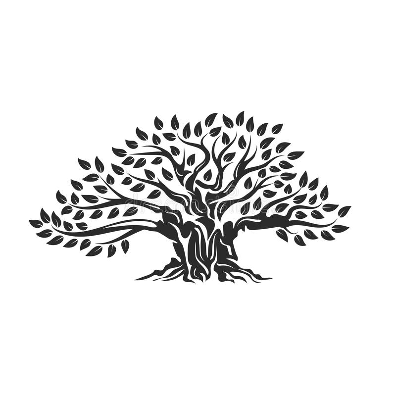 Organic natural and healthy olive tree silhouette logo isolated on white background. stock illustration