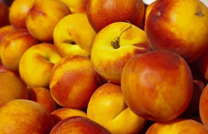 Organic Nectarines. At a Market royalty free stock photos