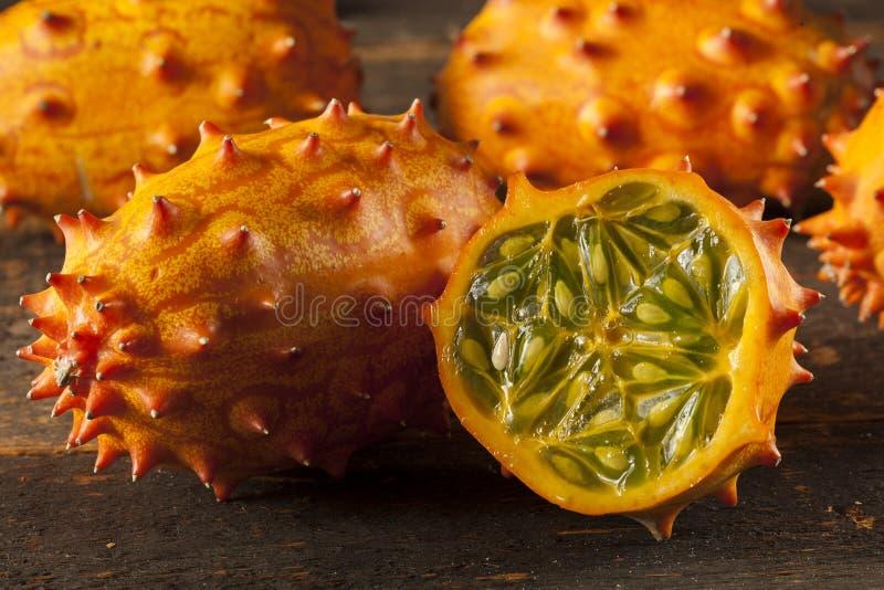 Organic Orange Kiwano Melon stock photos