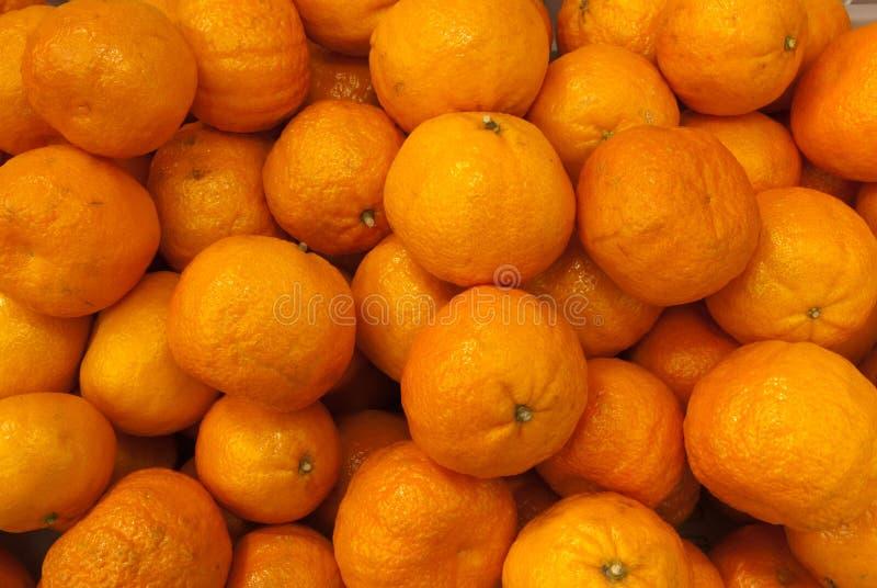 Organic Oranges stock photography