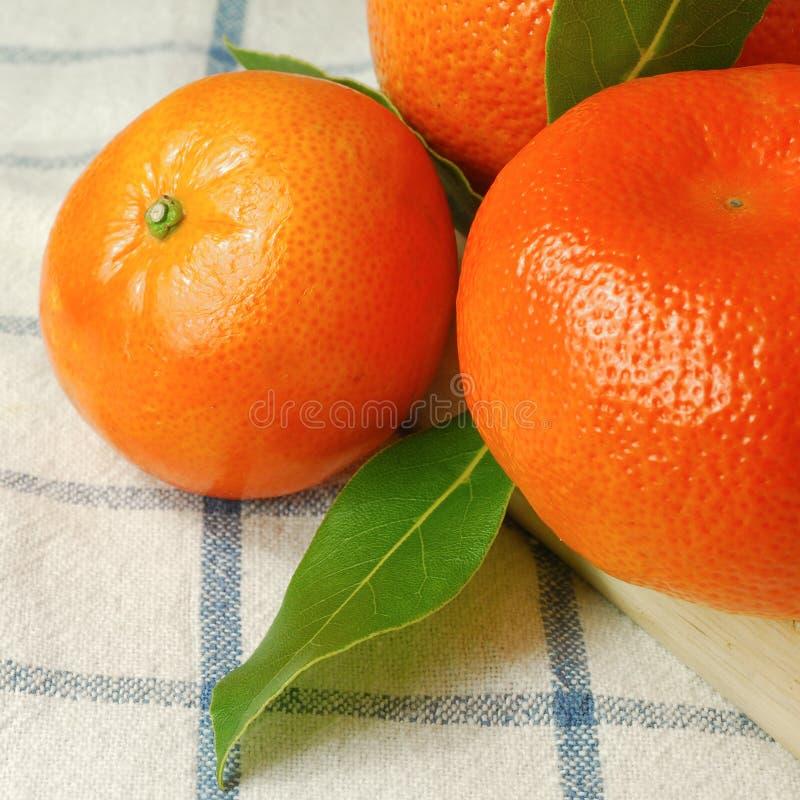 Free Organic Oranges Stock Photography - 4825122