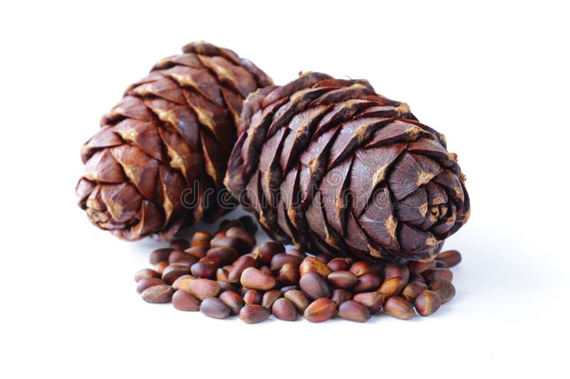 Organic pine cones and nuts stock image