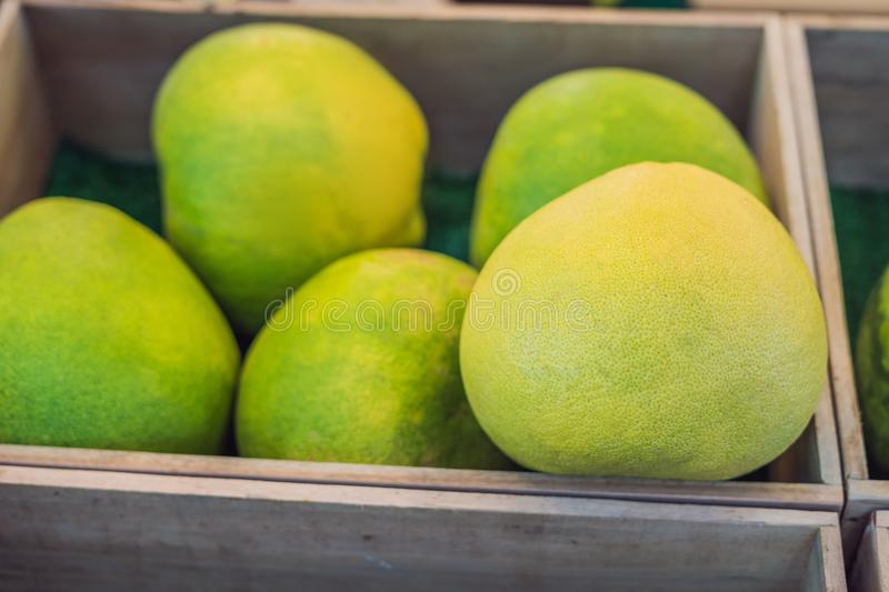 Organic pomelo or thai grapefruit for sale in market royalty free stock image