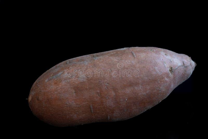 Organic sweet potato on black background stock images