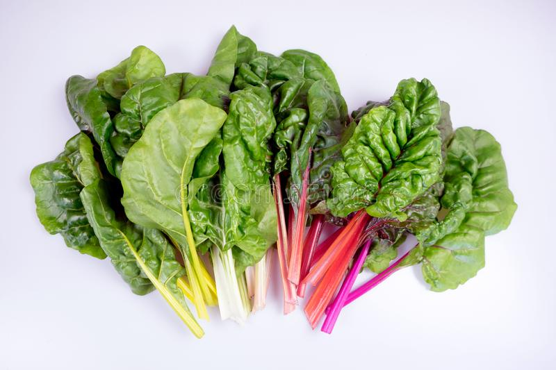 Organic rainbow chard: spray-free leafy greens in fan arrangement isolated on white royalty free stock photos