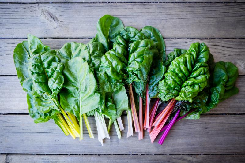 Organic rainbow chard: spray-free leafy greens in linear arrange royalty free stock images