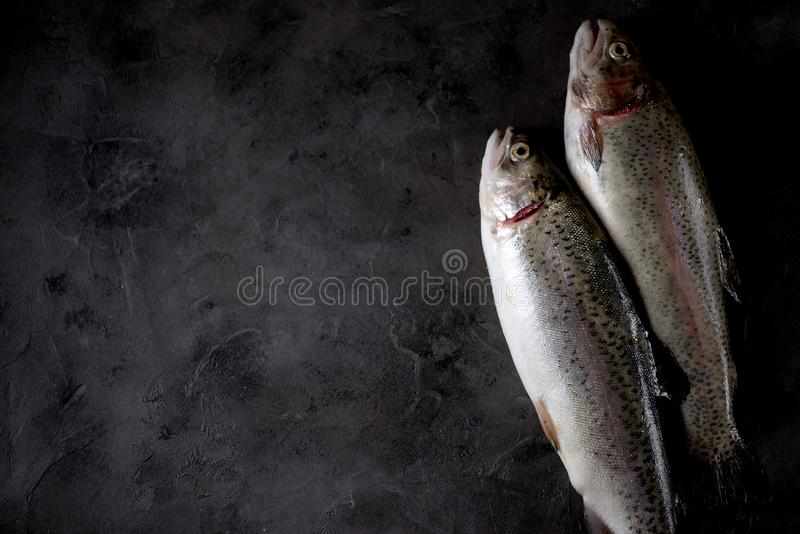 Organic raw fresh trout fish on an black background. Top view. stock photos