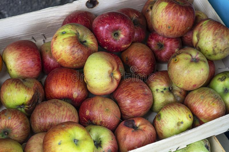 Organic  red apples in a wooden crate. Close up royalty free stock images