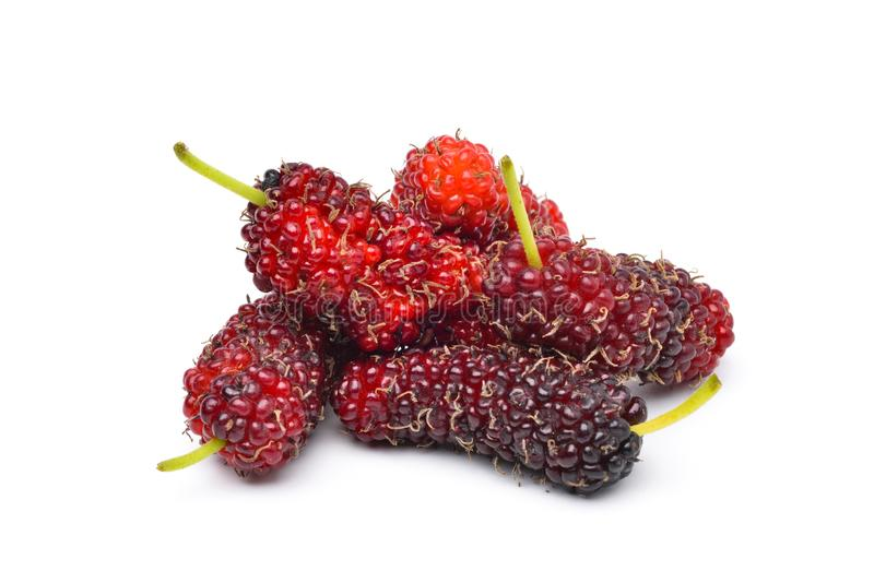 Organic Red Mulberry fruits. Pile of organic Mulberry fruits isolated on white background stock photos