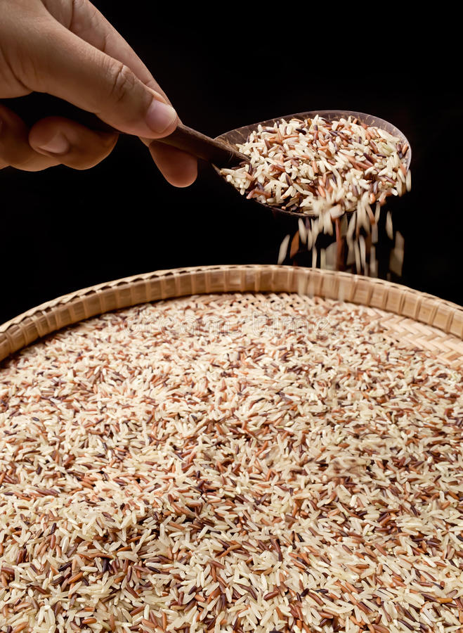 Organic Rice Stock Photos