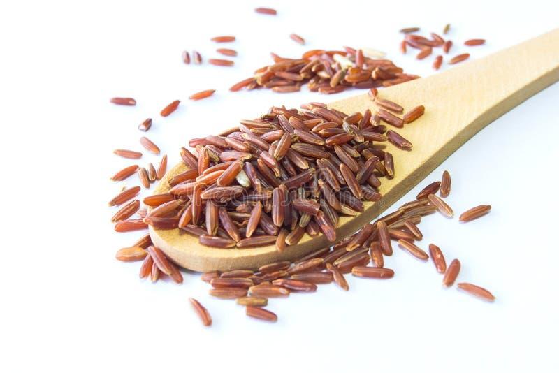 Organic Riceberry Rice (black jasmine rice) royalty free stock photo