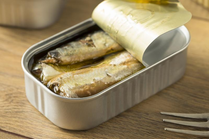 Organic Salty Canned Sardines. In Olive Oil royalty free stock image