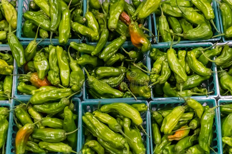Organic Shishito Peppers from above stock images