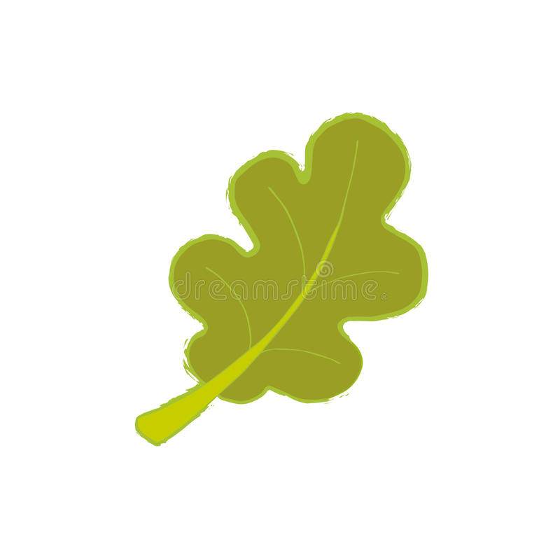 Organic sign oak leaf. Vector design template. Nature object, Plain flat style. vector illustration
